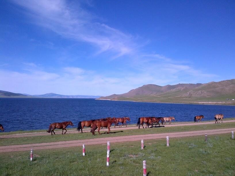 Great White Lake